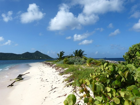 Sandy Island Grenada