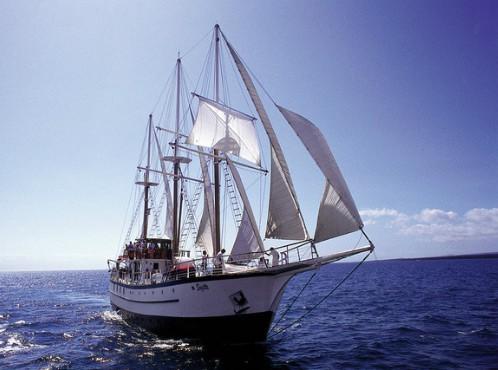 Sagitta Island windjammers