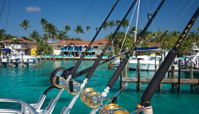 Bimini Fishing