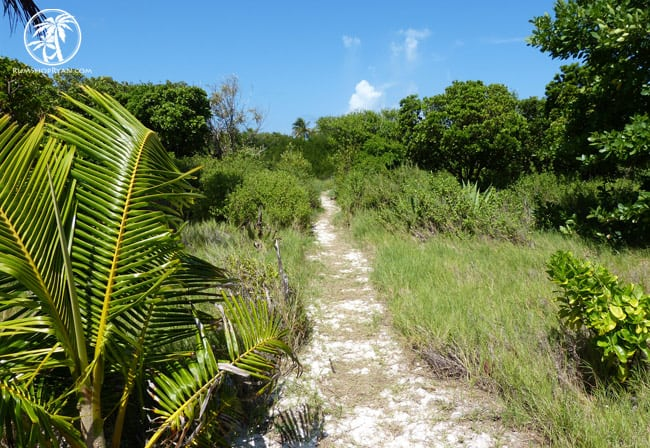 Tobago Cays Trail