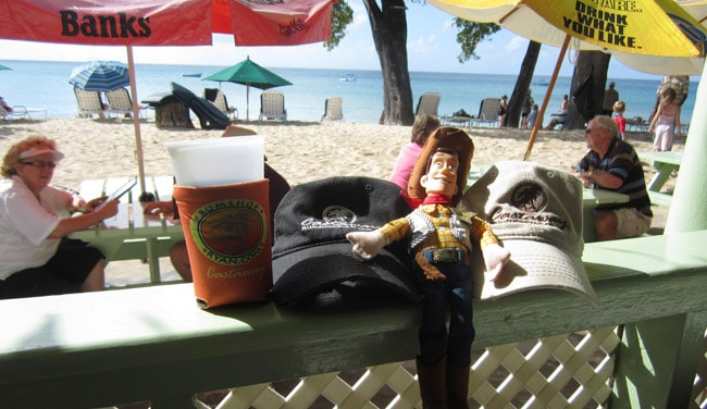 Castaway Roy P. is soaking up the Caribbean sun on Barbados.