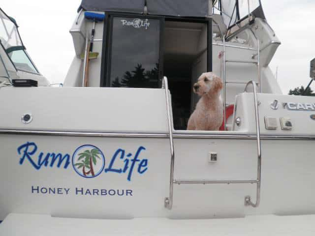 Love this one! Rick M. named his boat the Rum Life. Cheers!