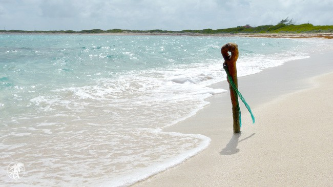 Loblolly Beach Anegada