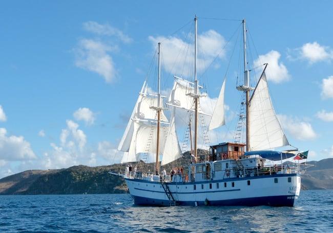 Island Windjammer Sagitta