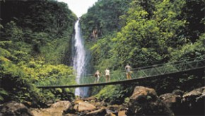 Guadeloupe Waterfall