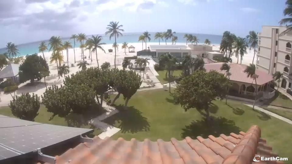Aruba Webcam Bucuti Beach