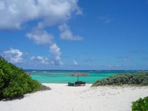 Anegada-loblolly-beach