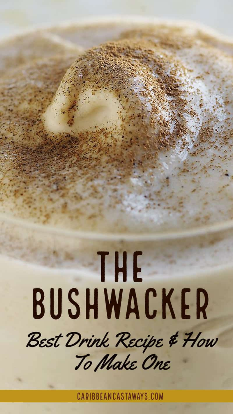 The Best Bushwacker Drink Recipe And How To Make It