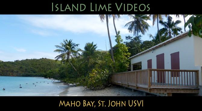 Maho Bay USVI