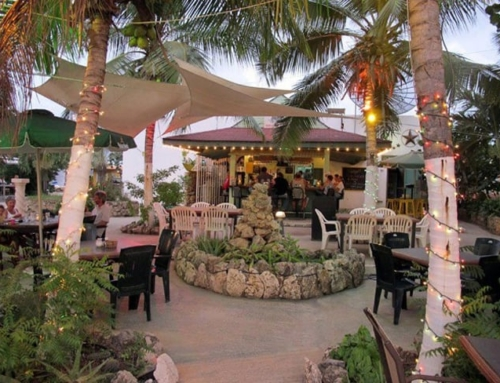 Bonaire's Paradise Moon Bar Serves Up More Than Just Good Food