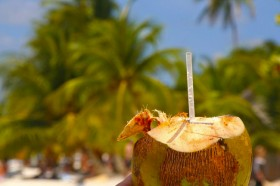 Coconut beach drink