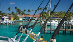 Bimini Fishing