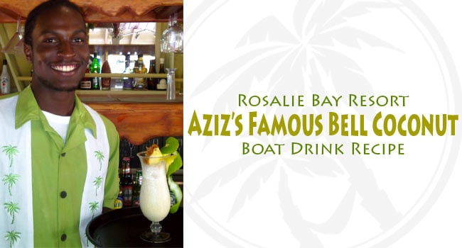 Rosalie Bay Coconut Bell Drink Recipe