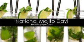 National Mojito Day