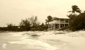 Sandy Toes Beach Bar