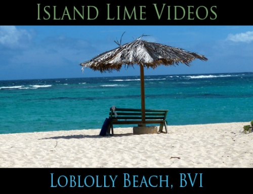 Loblolly Beach, Anegada BVI: Island Lime Videos