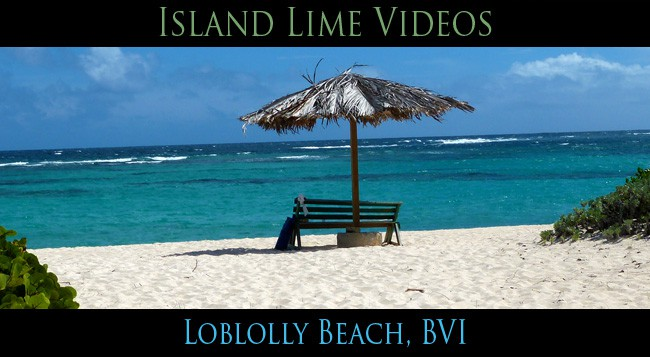 Loblolly Beach Anegada