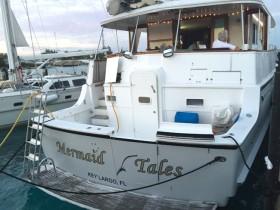 Mermaid Tales Castaway Cruise