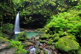 Things to do on Dominica