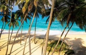 Things to do on Barbados