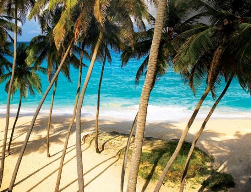 Ten Reasons to Visit Barbados This Year