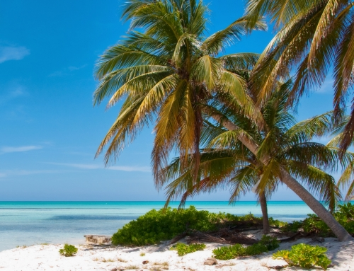 Grand Cayman: A Real Life Daydream, Part 2