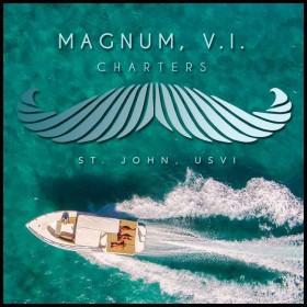 Boat charter on st john