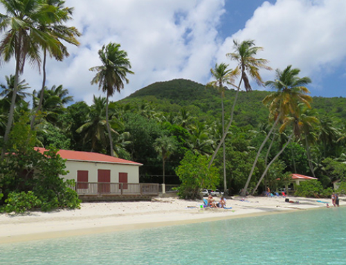 A Day At Maho Bay, St. John – Paradise Found