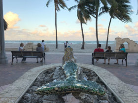 Hollywood beach mermaid