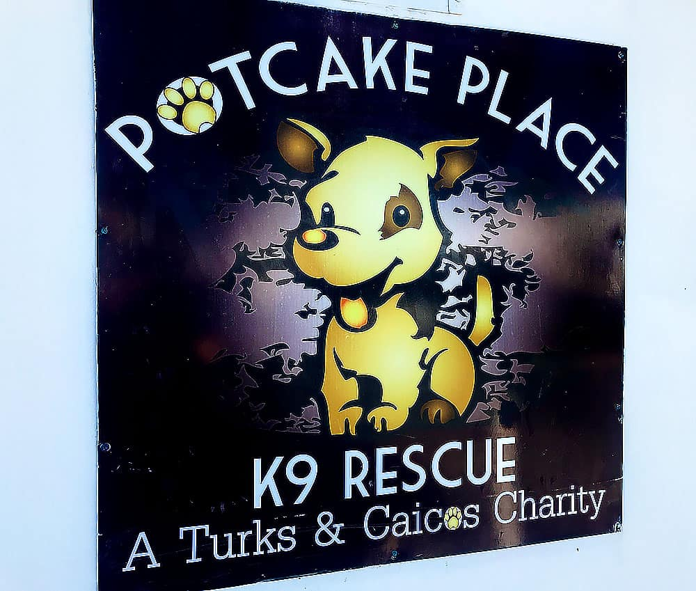 Potcake Place Turks and Caicos Dog Rescue Animal Rescue Shelter Charity