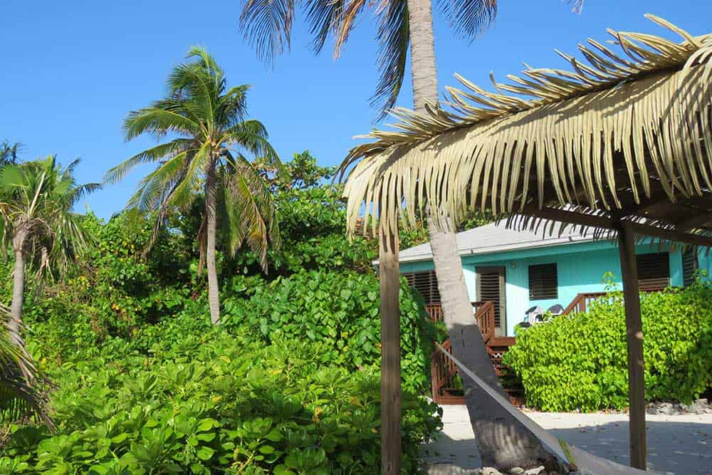 cottages on Little Cayman