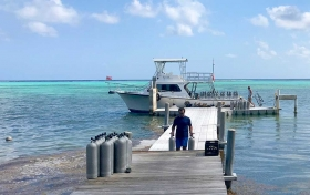 Little Cayman Diving