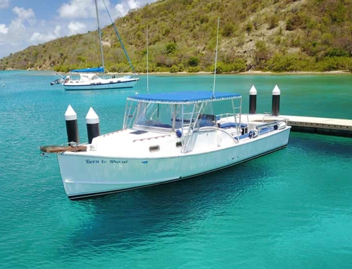 USVI Charter Boat For Sale – Be A Captain!