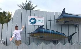 Big Game Club Marlin