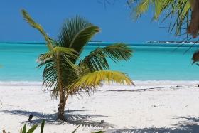 treasure sands club, abaco, bahamas