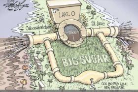 Lake Okeechobee, Big Sugar, Toxic Water, Southwest Florida