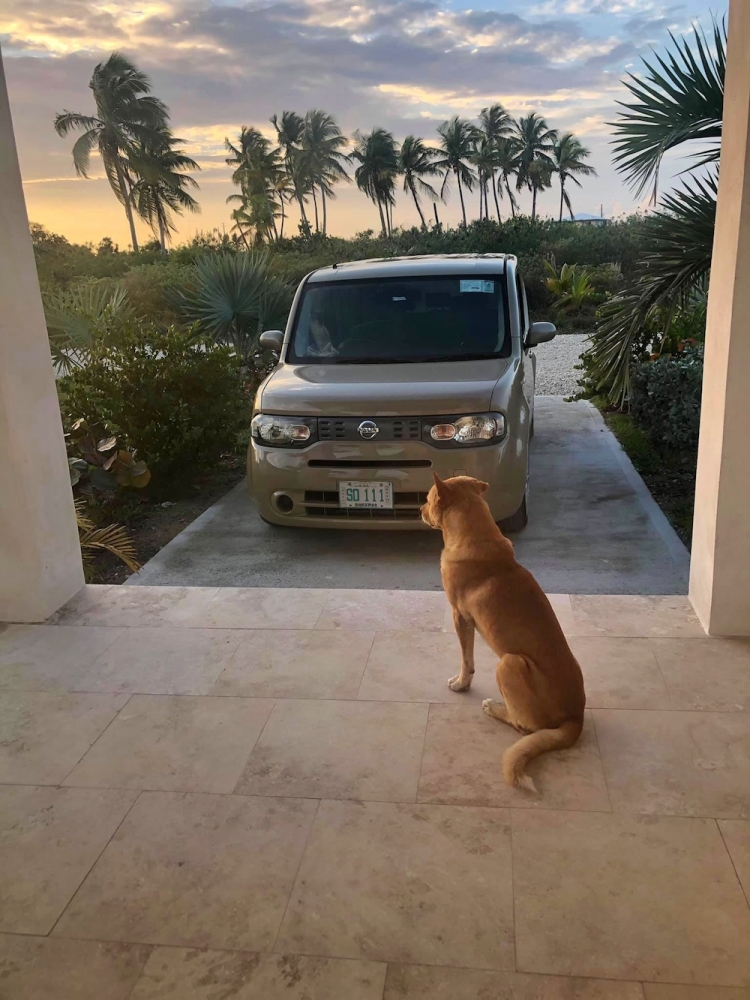 Cat Island, Bahamas