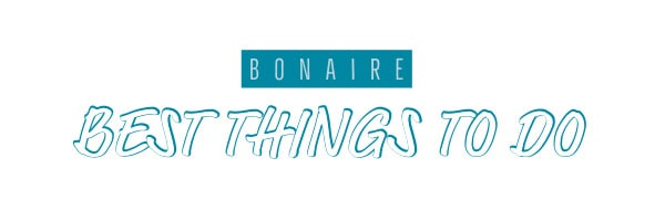 best things to do on Bonaire