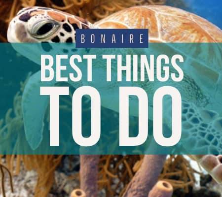 bonaire things to do