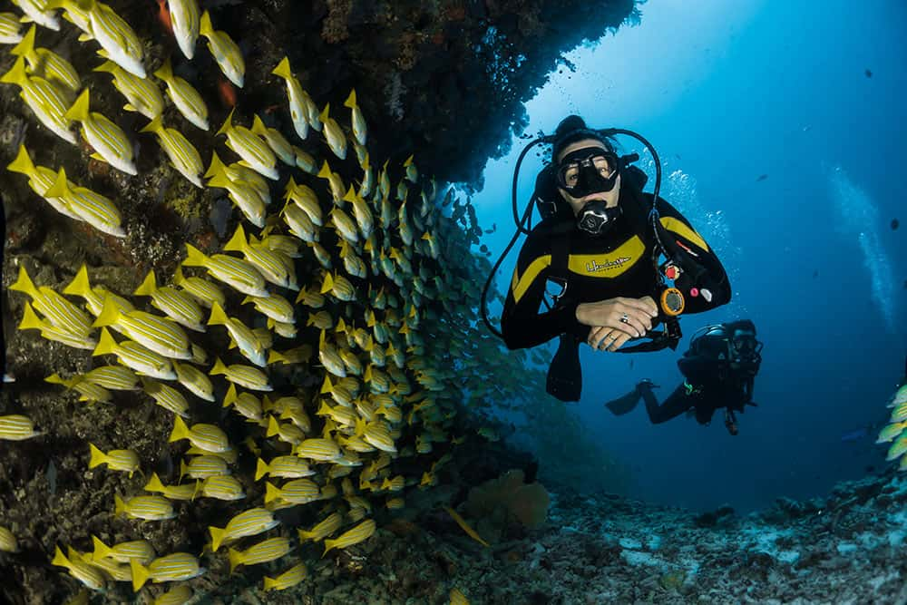 st vincent scuba diving