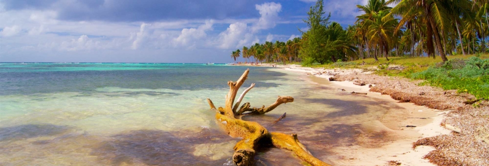 Trinidad and Tobago best things to do
