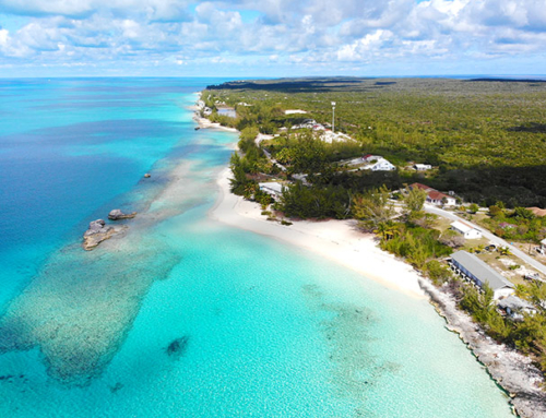 Caribbean Castaways Podcast Episode 3: Why You Should Visit Cat Island, Bahamas