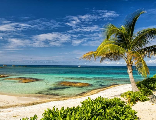 The Ultimate Guide To Great Stirrup Cay, Bahamas In 2020
